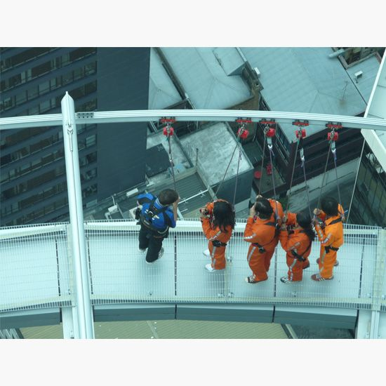 Auckland Skywalk fall arrest system for public visitors